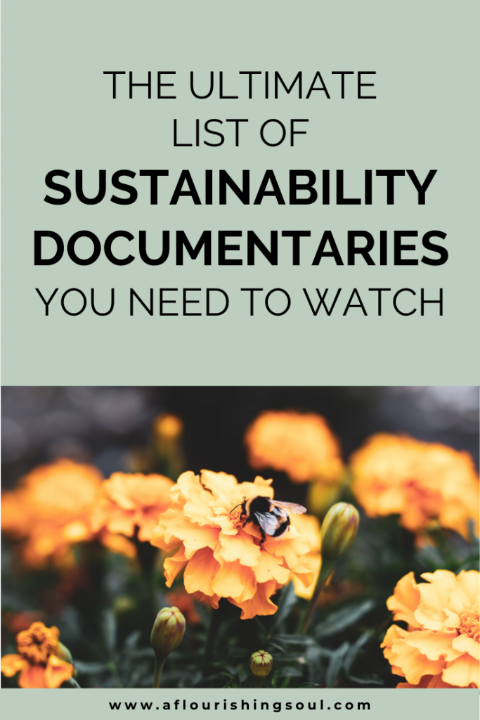 Are you looking for sustainability documentaries? This list of documentaries about sustainability has you covered! Learn about zero waste, sustainable food, and nature by watching these environmental documentaries! #sustainable #sustainableliving #naturedocumentary #aflourishingsoul